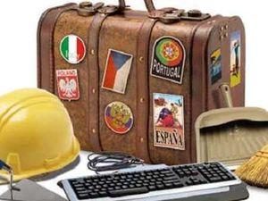 Минулоріч 26 іноземців отримали роботу на Кіровоградщині