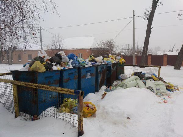 ТОВ «Екостайл» має два тижні для  вивезення побутових відходів з території Кропивницького