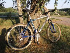 В  Олександрії невідомий грабіжник відібрав у дідуся  велосипед
