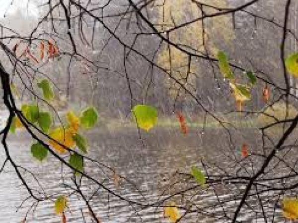 Погода у Кропивницькому 12 жовтня