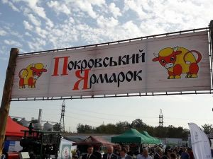 Кропивницький: Мартин Боруля буде брендом «Покровського ярмарку»