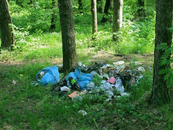 Кропивницькі екоактивісти продовжують боротися з розкиданим сміттям