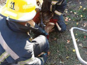 Кіровоградщина: Як рятували собаку, який заплутався у ланцюгу