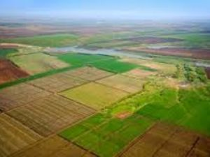 Довгоочікуваний крок зроблено: Громади готуються до процесу передачі землі у власність ОТГ