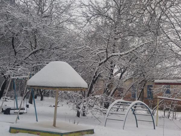 Погода у Кропивницькому 5 лютого