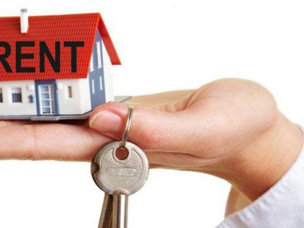 Близько 90% ринку орендного житла перебуває в тіні