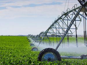 В Україні створюватимуть сучасні зрошувальні системи для  аграріїв