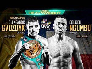 «Большой бокс»: Александр Гвоздик проведет первую защиту титула