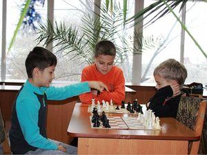 Юні кропивницькі шахисти взяли участь у турнірі (ФОТО)