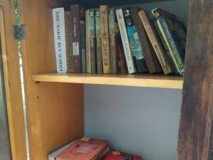 У одному з районів Кіровоградщини з'явилася шафа обміну книжками (ФОТО)