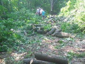 Гучні кримінальні події, що сталися на Кіровоградщині на минулому тижні