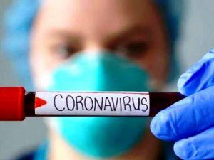 На Кіровоградщині зареєстровані 203 випадки коронавірусу
