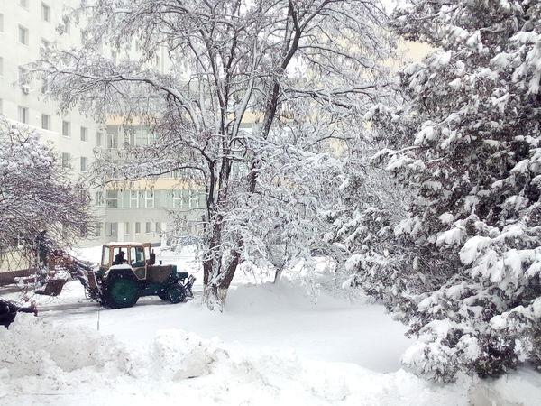 Погода у Кропивницькому у перший робочий день, 28 січня