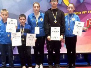 Кропивницькі тхеквондисти вибороли медалі на чемпіонаті України