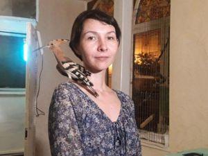 У Кропивницькому жінка лікує травмованих диких птахів (ВІДЕО)