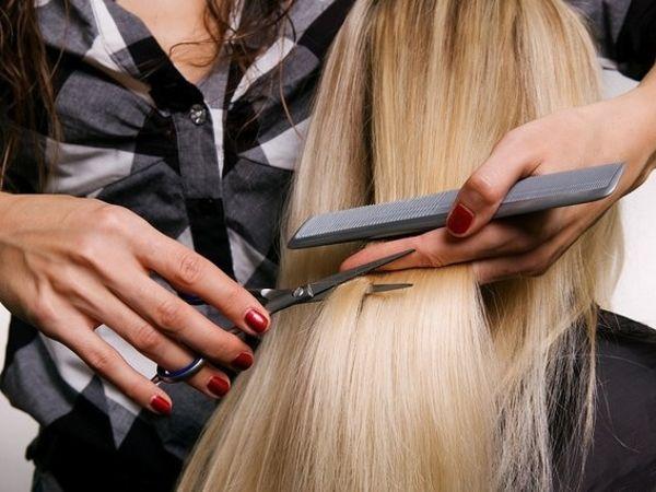 Безробітні Кіровоградщини можуть безкоштовно вивчитись у Одесі на перукаря