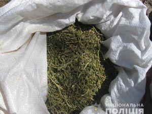 Кіровоградський район: Поліцейські знайшли у збувача наркотиків товару  на двісті тисяч
