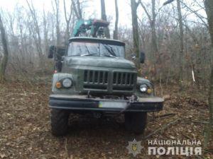 Кіровоградщина: Чорні лісоруби накрали деревини на 200 тисяч  (ФОТО)