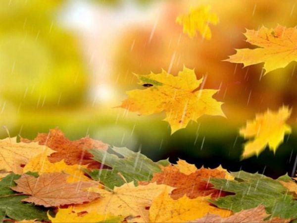 Погода у Кропивницькому 2 жовтня