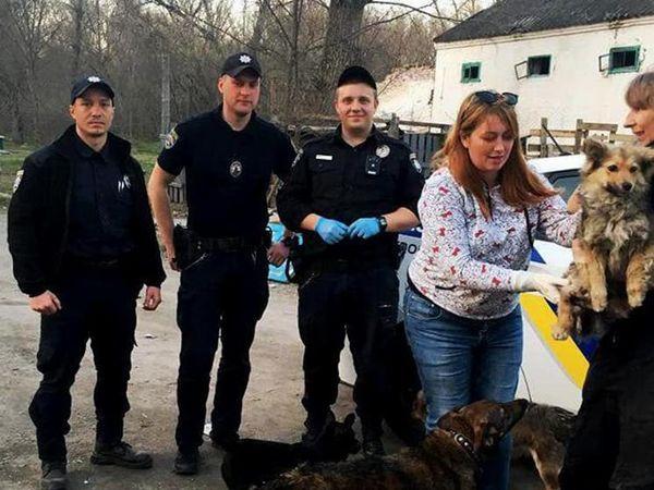 На Кіровоградщині патрульні знайшли при дорозі собаку з переломами (ФОТО)
