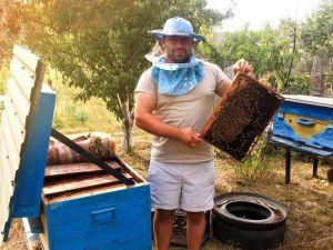 На Кіровоградщині військовий став бджолярем