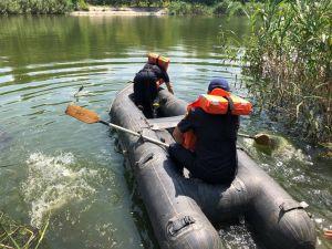 У Кропивницькому у Інгулі ледь не потонув собака