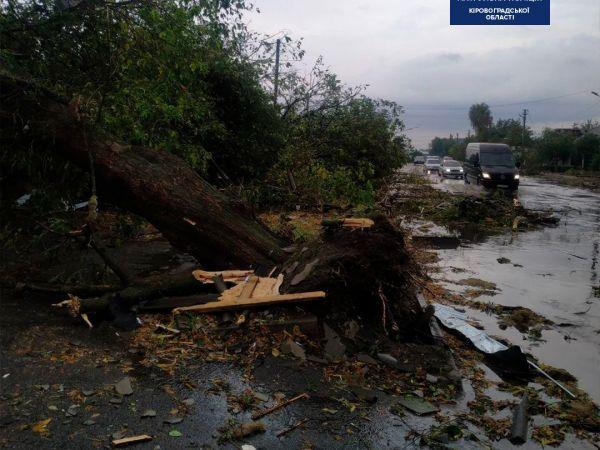 У Кропивницькому під час буревію травмувалося троє містян