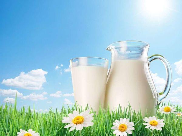 На «Агро-2019» обговорили нову систему контролю безпечності та якості молока