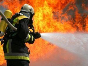 На одному з полів Кропивницького здійнялася пожежа. ВІДЕО