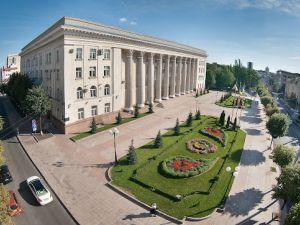 На День міста до Кропивницького завітає DZIDZIO