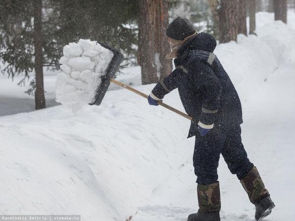 Безробітні Кіровоградщини підзаробляли на прибиранні снігу і озелененні територій