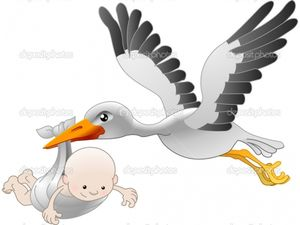 У Кропивницькому за тиждень народилося 24 немовляти
