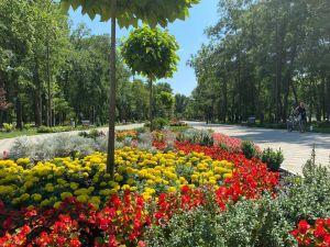 Кіровоградщина: Якими будуть оновлений парк і палац культури в Олександрії