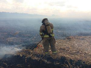 Кіровоградська область: Вогнеборці загасили чотири пожежі на відкритій місцевості