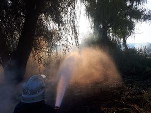 У вихідний день на Кіровоградщині сталося 12 пожеж у екосистемі
