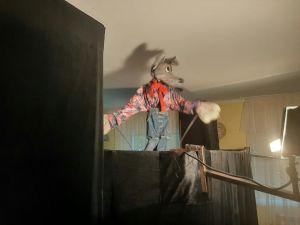 Кропивницкие волонтеры порадовали детей-сирот кукольным театром (ФОТО)