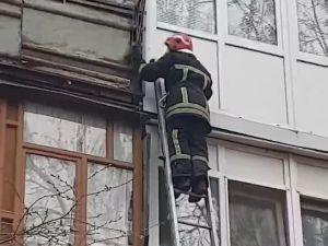 У Кропивницькому на балконі багатоповерхівки застрягло білченя