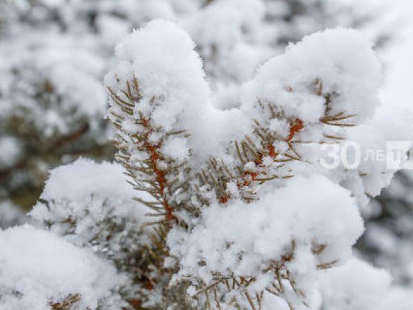 Погода у Кропивницькому 24 лютого