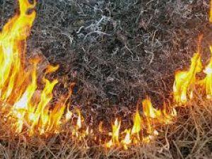 На Кіровоградщині горіла суха трава і не тільки