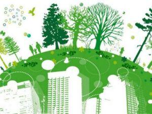 У Держекоінспекції назвали топ-3 екологічні проблеми в Україні