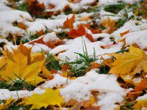 Погода у Кропивницькому 30 жовтня
