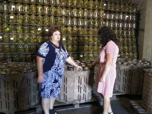 Кіровоградщина: Безробітні Добровеличківки працевлаштовуються на консервний завод