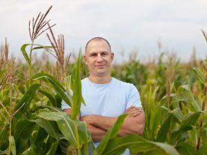 Безробітні Кіровоградщини можуть безкоштовно стати фермерами