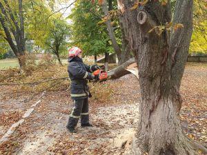 Кропивницькі рятувальники двічі розпилювали та прибирали аварійні дерева