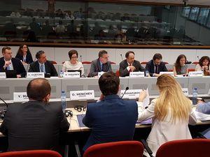 Діалог між ЄС та Україною з питань прав людини