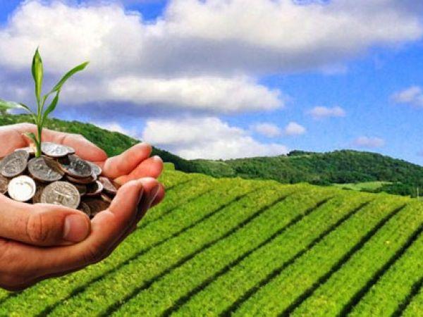 Як допомагатиме держава аграріям у наступному році?