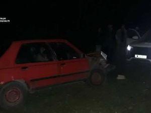 На Кіровоградщині п'яний водій врізався у стовб (ФОТО)