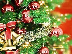 Где и как в Кропивницком ярко отпраздновать новогодние праздники?