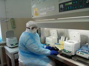 COVID-19: На Кіровоградщині коронавірус виявили ще у сімох людей