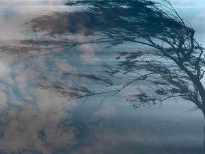 На Кіровоградщині очікується сильний вітер